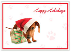 Happy Holidays Dog Card