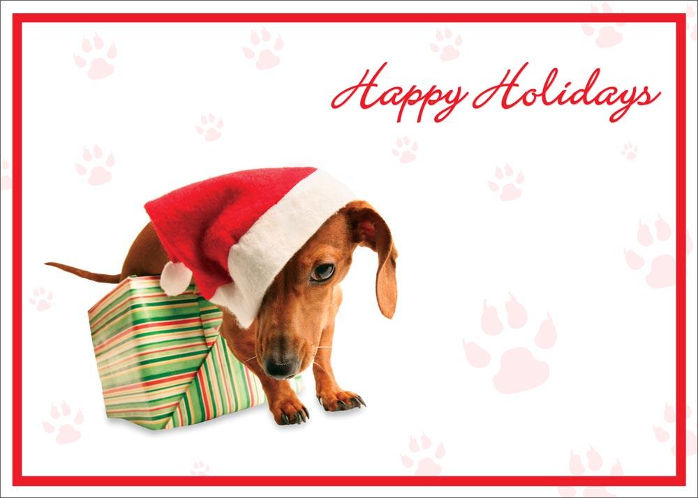Happy Holidays Animated Cards Happy Holidays Dog Card