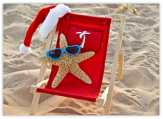 Starfish Warm Holidays