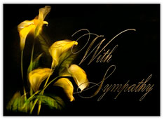 Illuminating Lilies Sympathy Card