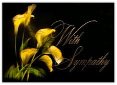 Illuminating Lilies Sympathy Card