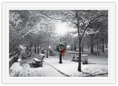 City Park Sidewalk Holiday Card