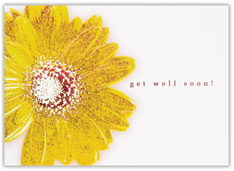 Embossed Daisy Get Well