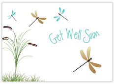Dragonflies Get Well