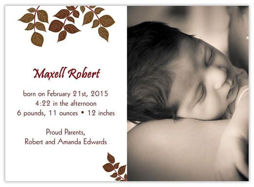 Brown and Burgundy Birth - Birth Announcements from CardsDirect