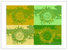 Sunflower Recycled Earth Day