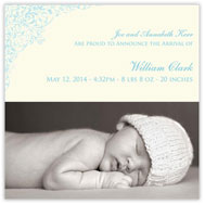 Darling Damask Photo Blue