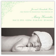 Darling Damask Photo Green