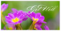 Pretty Petals Get Well Card