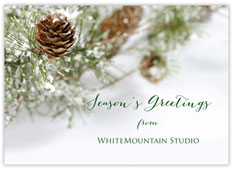 Holiday Evergreen Christmas Card