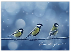 Three Chickadees Holiday Card