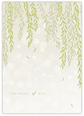 Willow Thinking of You Card