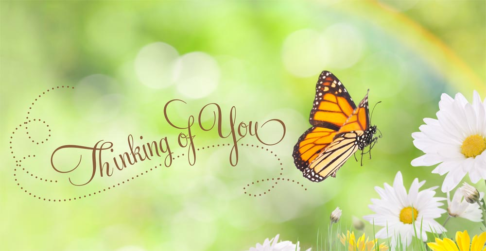 thinking of you purple butterfly graphic pictures to pin on pinterest