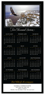 2016 Bald Eagle Calendar Card