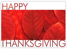 Brilliant Red Thanksgiving