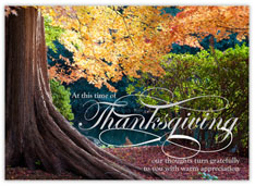 Grateful Tree of Thanks