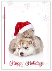 Purrfect Christmas Puppy
