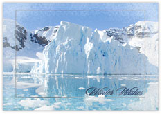 Shining Silver Icebergs
