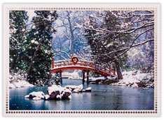Wintery Bridge
