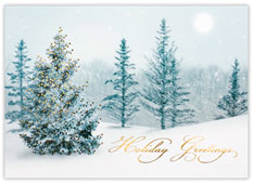 Serene Snow Scene Holiday Card