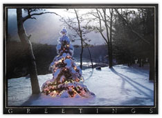 Snow Scene Lighted Tree