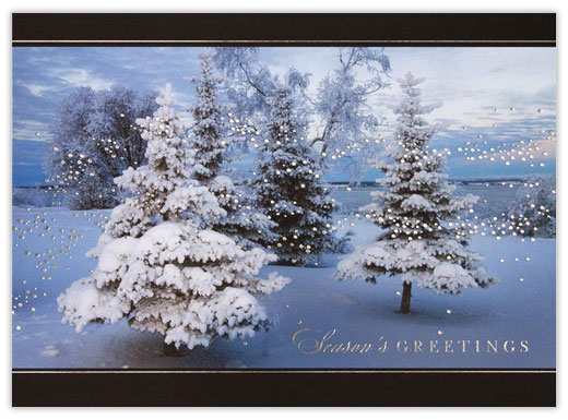Winter Forest Evening - Winter Scenes from CardsDirect