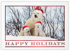 Holiday Polar Bears