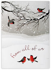 From All Of Us Birds