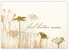 Wildflowers Get Well Card