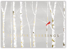 Winter Birch Holiday Card