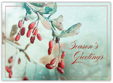Greetings of Berries Holiday Card