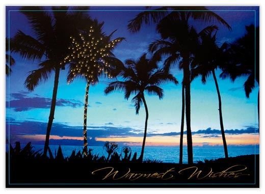 Palm Trees at Sunset - Tropical & Beach from CardsDirect
