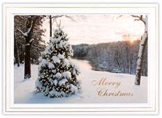 Holiday Tree at Sunset  Christmas Card