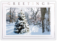 City Park Scene Holiday Card