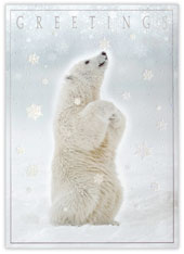 Polar Bear Greetings