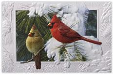 Candid Cardinals