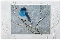 Winter Blue Bird