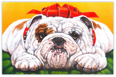 Holiday Bulldog