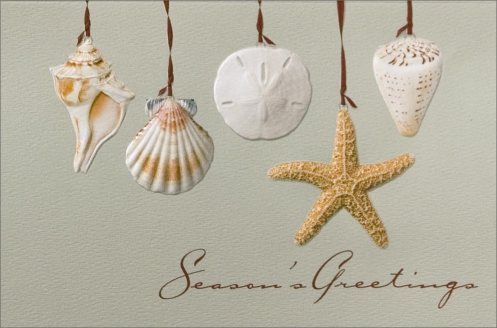 Home gt christmas cards gt themes gt tropical amp beach gt seashell