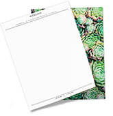 One side of this letterhead features a large arrangement of succulents and the other features subtle horizontal and vertical accents for your essential business information.