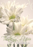 The card features beautiful, life-like daisies with a thoughtful message 'Thinking of You at This Time of Loss' below.