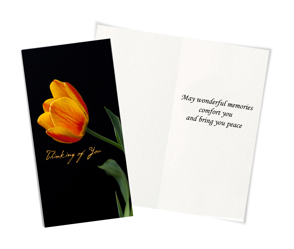 50 Assorted All Occasion Greeting Cards