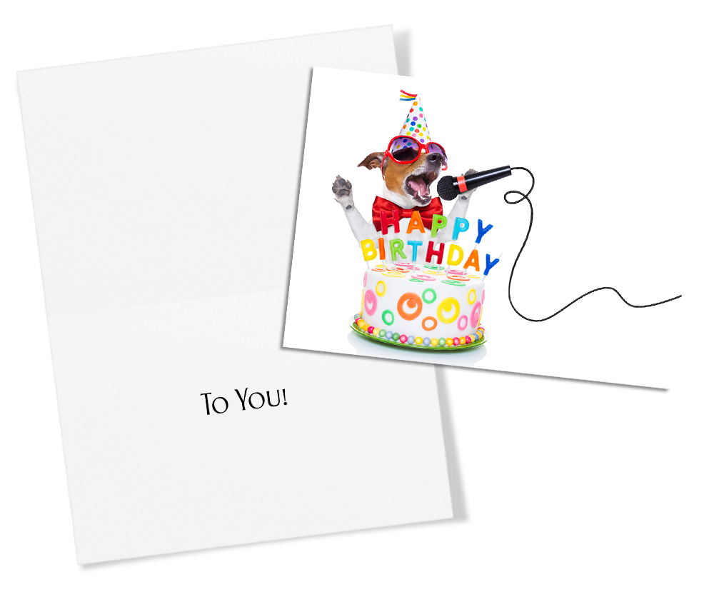 50 assorted birthday humor greeting cards boxes for a total of 50 cards bookmarktalkfo Image collections
