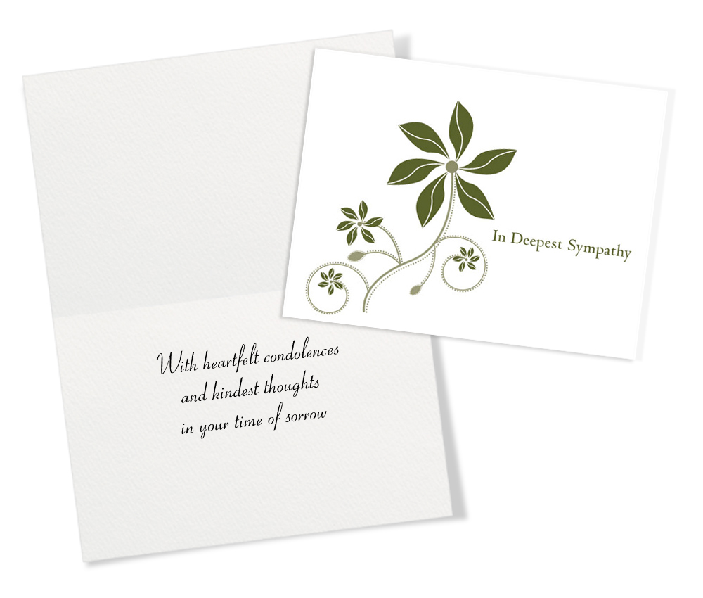 Gentle Sympathy 25 Assorted Sympathy Greeting Cards